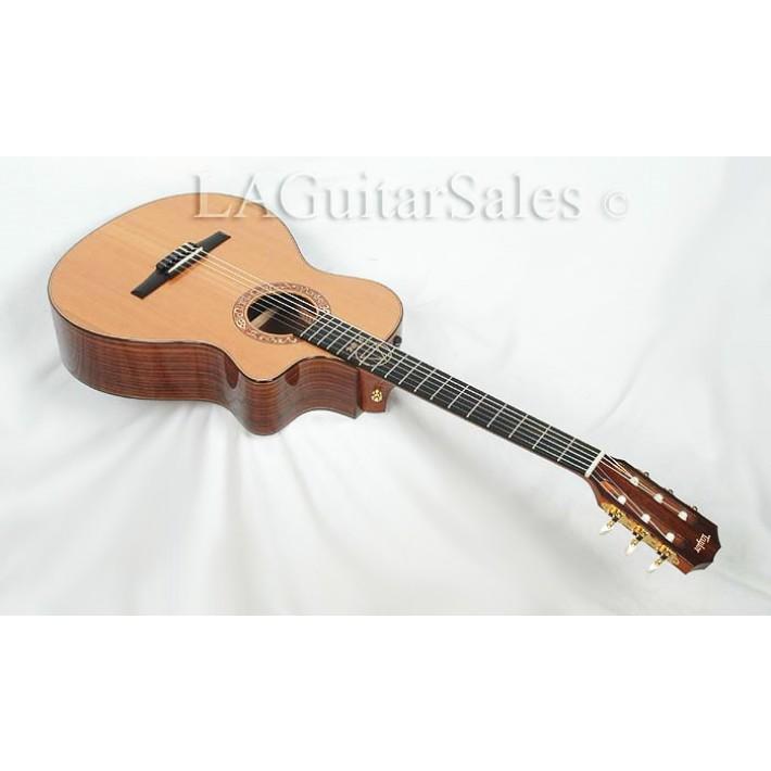 Taylor Guitars JMSM Jason Mraz Signature Model #0107