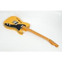 Fender Britt Daniel Signature Thinline Telecaster with Case #73851