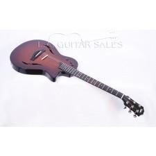 Taylor Guitars T5z Classic Premier Dealer Special Edition #56095