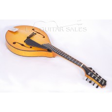 Collings MT2 Mandolin Englemann Birdseye Maple Varnish Finish