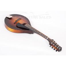Collings MTO Mandolin