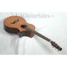 Edwinson Guitars Falcon