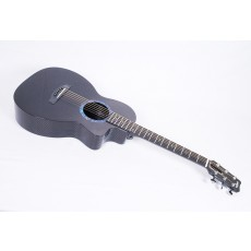 RainSong CO-PA1100NS Concert Series Parlor - Contact us for ETA