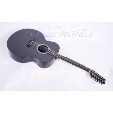 Rainsong JM3000 12-String Jumbo