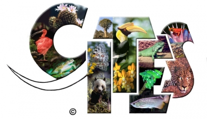 David vs Goliath: The Industry Takes On CITES!